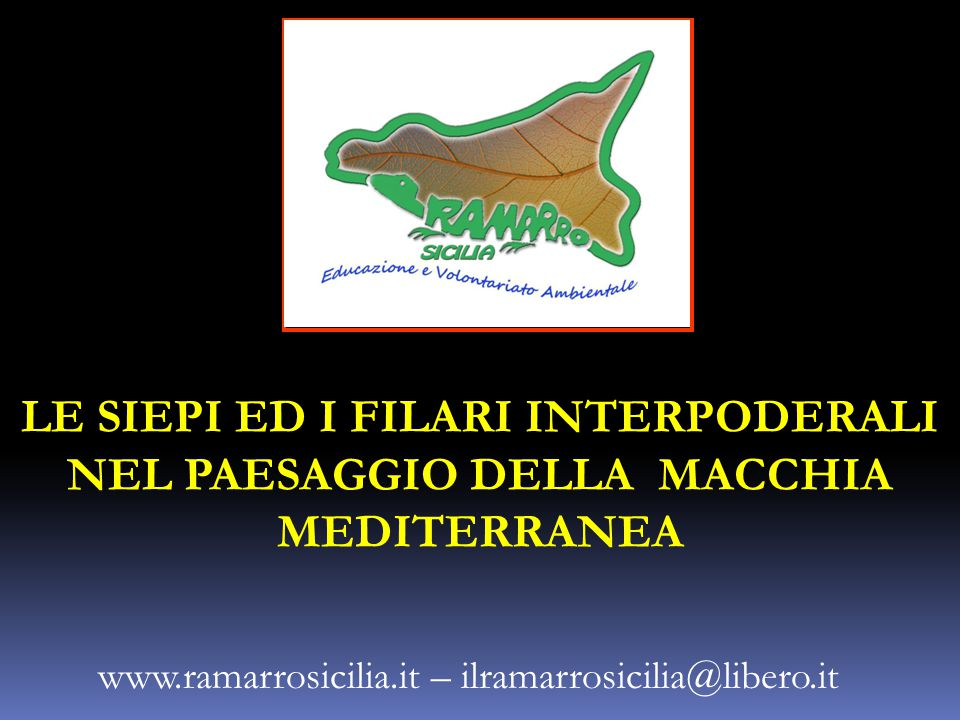 www.ramarrosicilia.it – ilramarrosicilia@libero.it