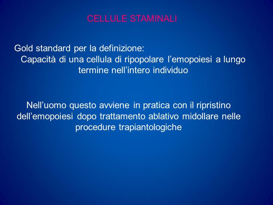 CELLULE STAMINALI Gold standard per la definizione: Capacità di una cellula di ripopolare l'emopoiesi a lungo termine nell'intero individuo.