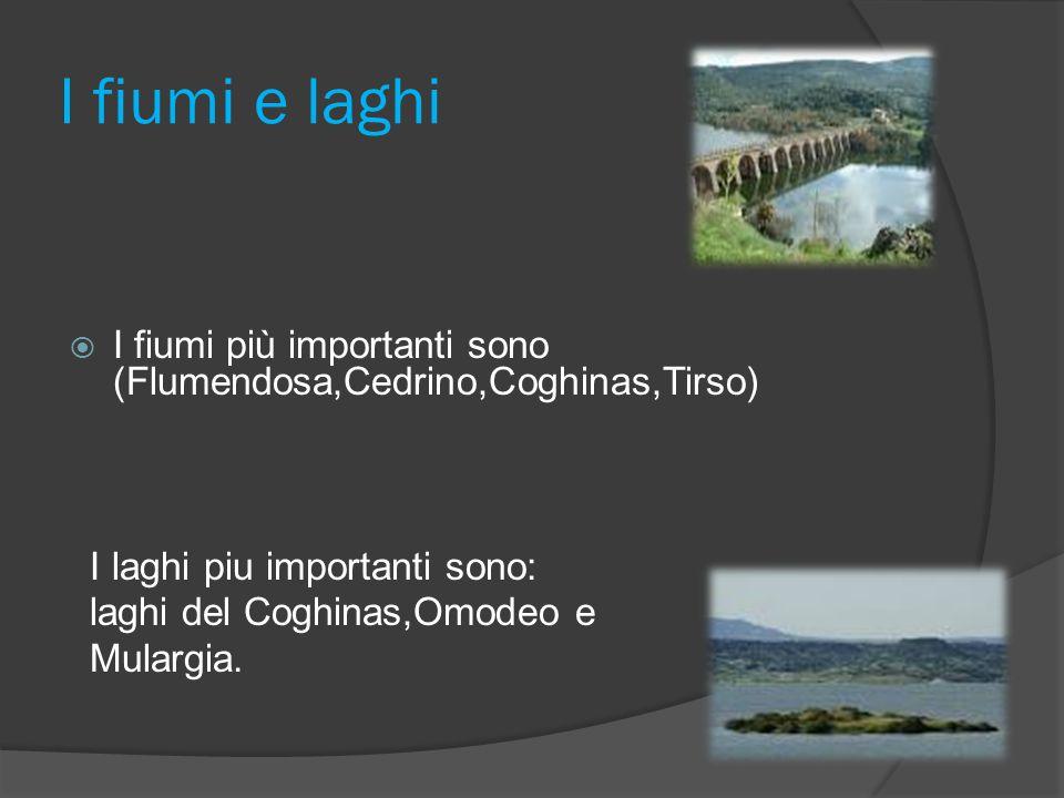 I fiumi e laghi I fiumi più importanti sono (Flumendosa,Cedrino,Coghinas,Tirso) I laghi piu importanti sono: