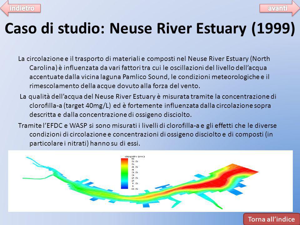 Caso di studio: Neuse River Estuary (1999)