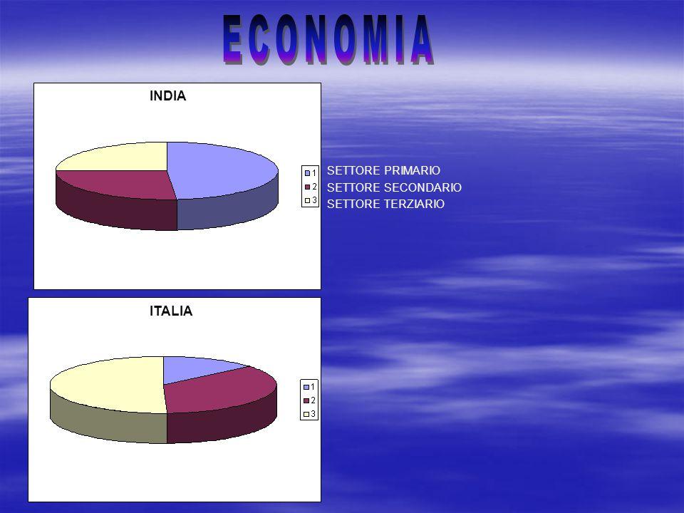 ECONOMIA INDIA INDIA INDIA ITALIA SETTORE PRIMARIO SETTORE SECONDARIO