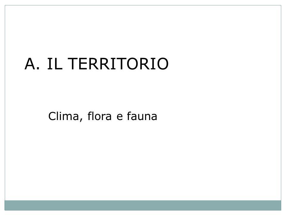 A. IL TERRITORIO Clima, flora e fauna