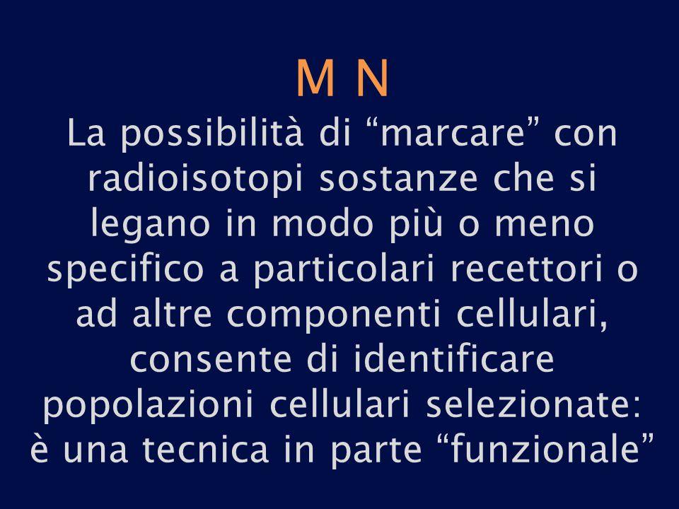 M N La possibilità di marcare con radioisotopi sostanze che si legano in modo più o meno specifico a particolari recettori o ad altre componenti cellulari, consente di identificare popolazioni cellulari selezionate: è una tecnica in parte funzionale