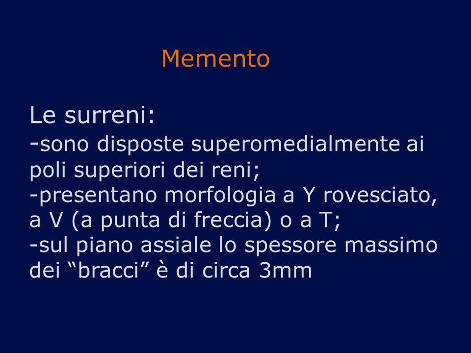 Memento Le surreni: -sono disposte superomedialmente ai poli superiori dei reni; -presentano morfologia a Y rovesciato, a V (a punta di freccia) o a T; -sul piano assiale lo spessore massimo dei bracci è di circa 3mm