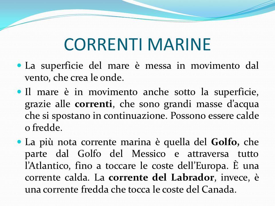 CORRENTI MARINE La superficie del mare è messa in movimento dal vento, che crea le onde.