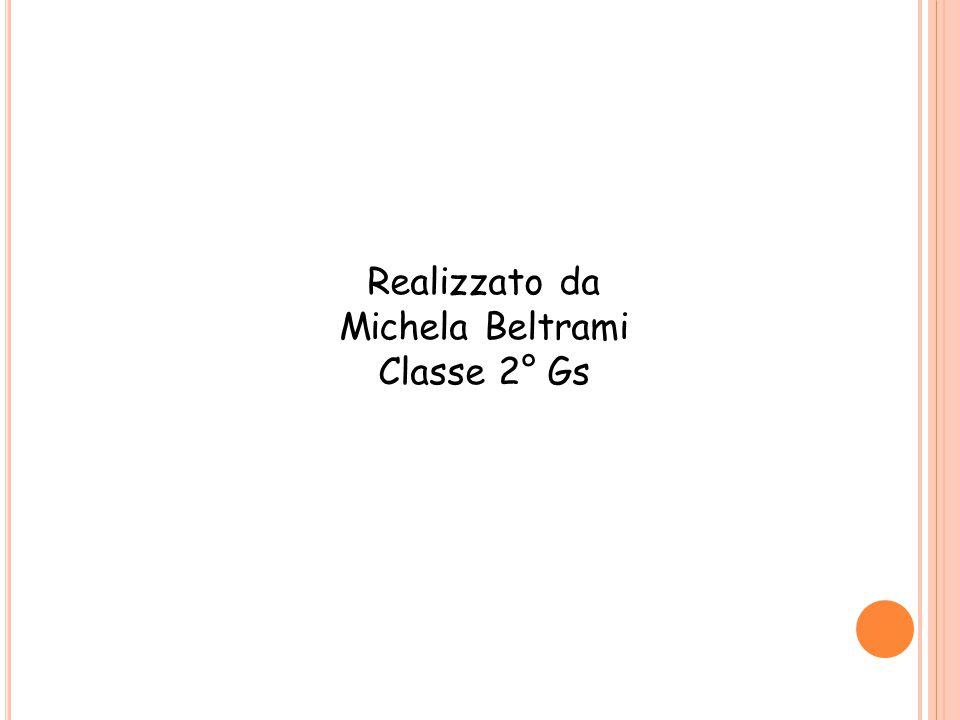 Realizzato da Michela Beltrami Classe 2° Gs