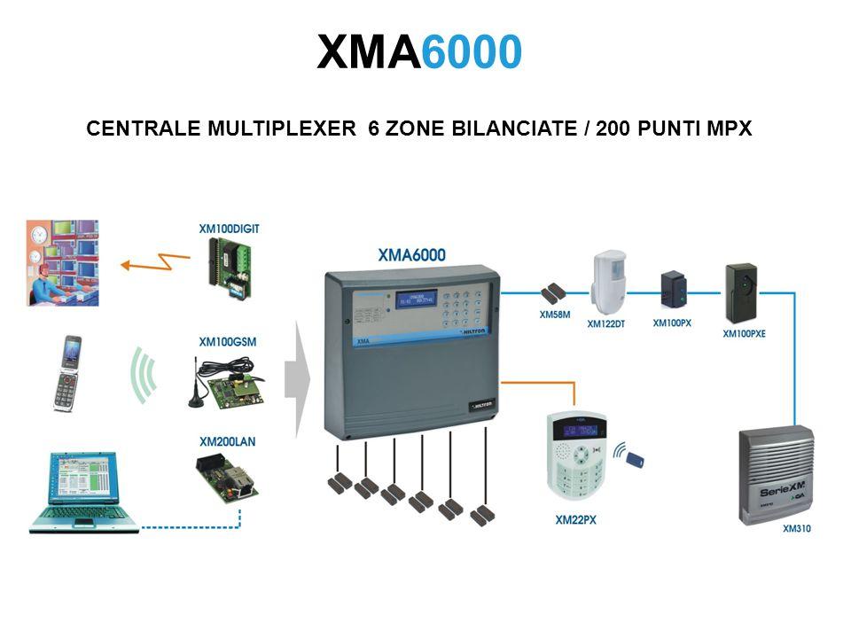 CENTRALE MULTIPLEXER 6 ZONE BILANCIATE / 200 PUNTI MPX