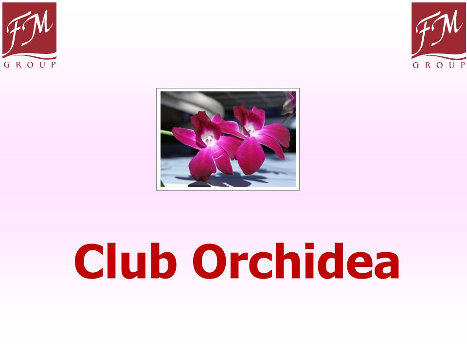 Club Orchidea La seconda parte del piano Marketing è il Club Orchidea