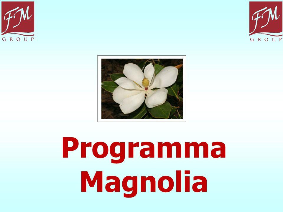 Programma Magnolia