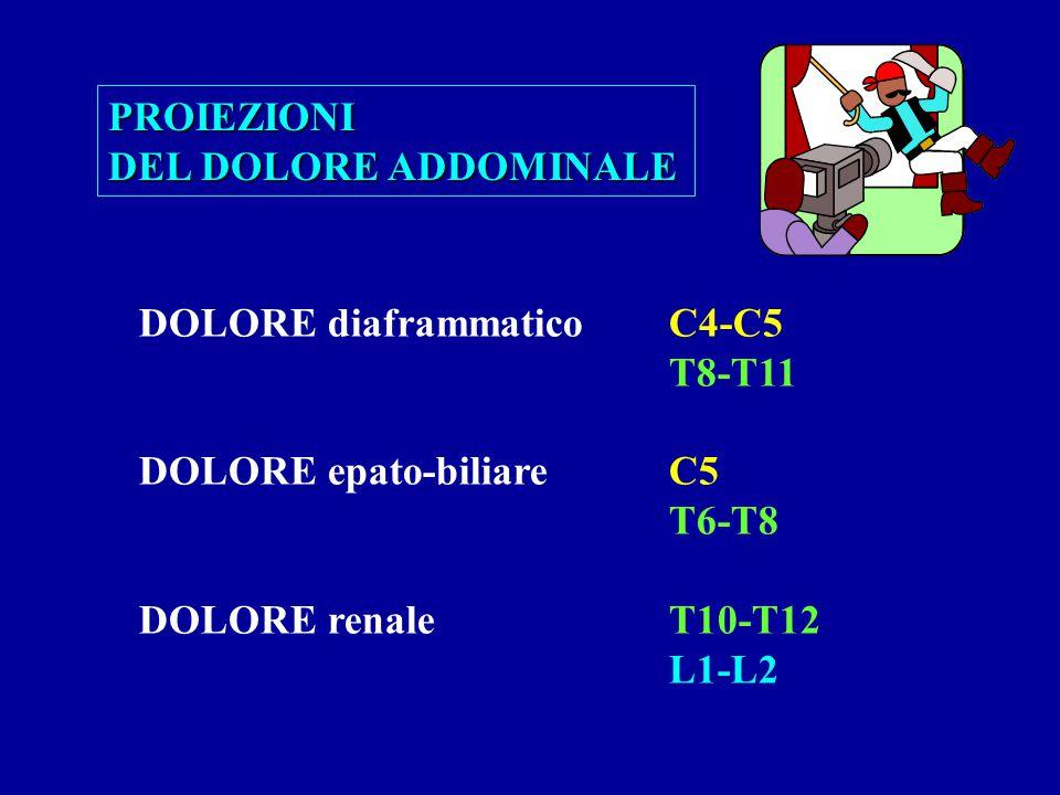 PROIEZIONI DEL DOLORE ADDOMINALE. DOLORE diaframmatico C4-C5. T8-T11. DOLORE epato-biliare C5. T6-T8.