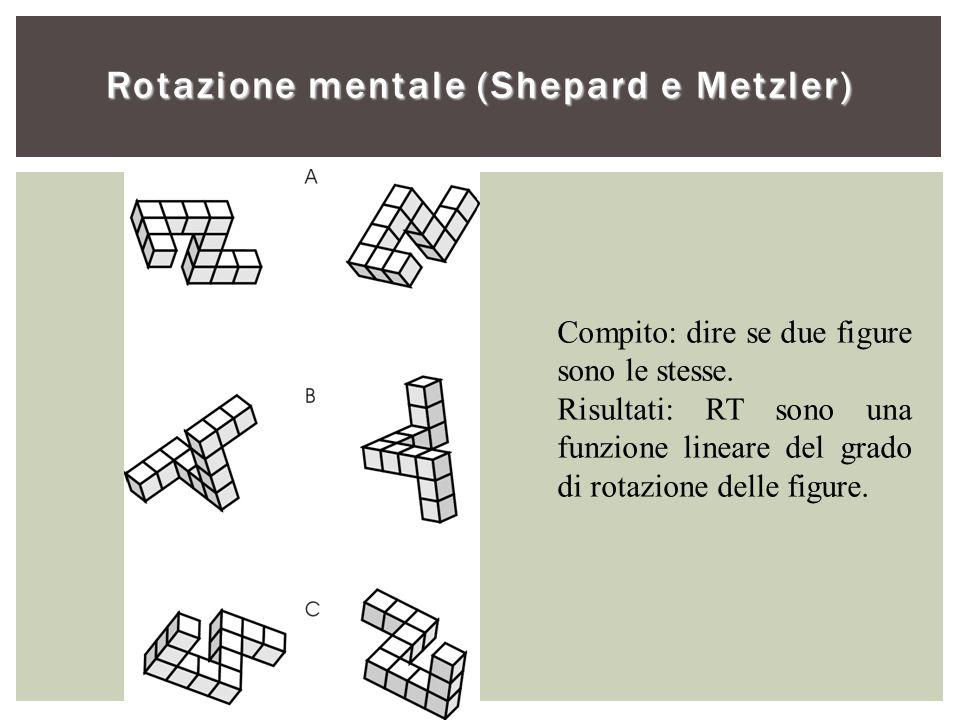 Rotazione mentale (Shepard e Metzler)