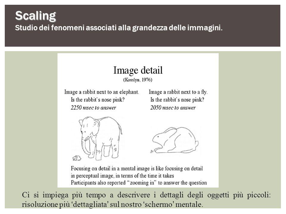 Scaling Studio dei fenomeni associati alla grandezza delle immagini.