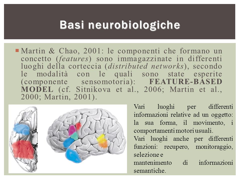 Basi neurobiologiche