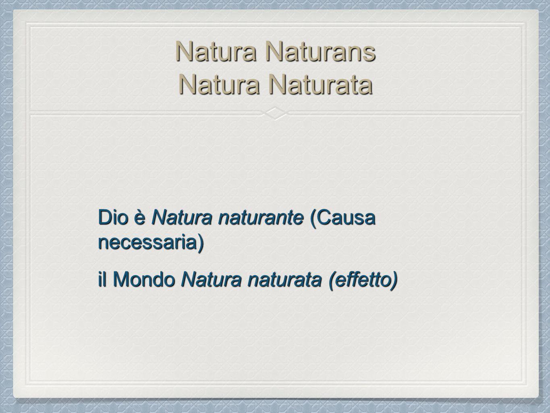 Natura Naturans Natura Naturata