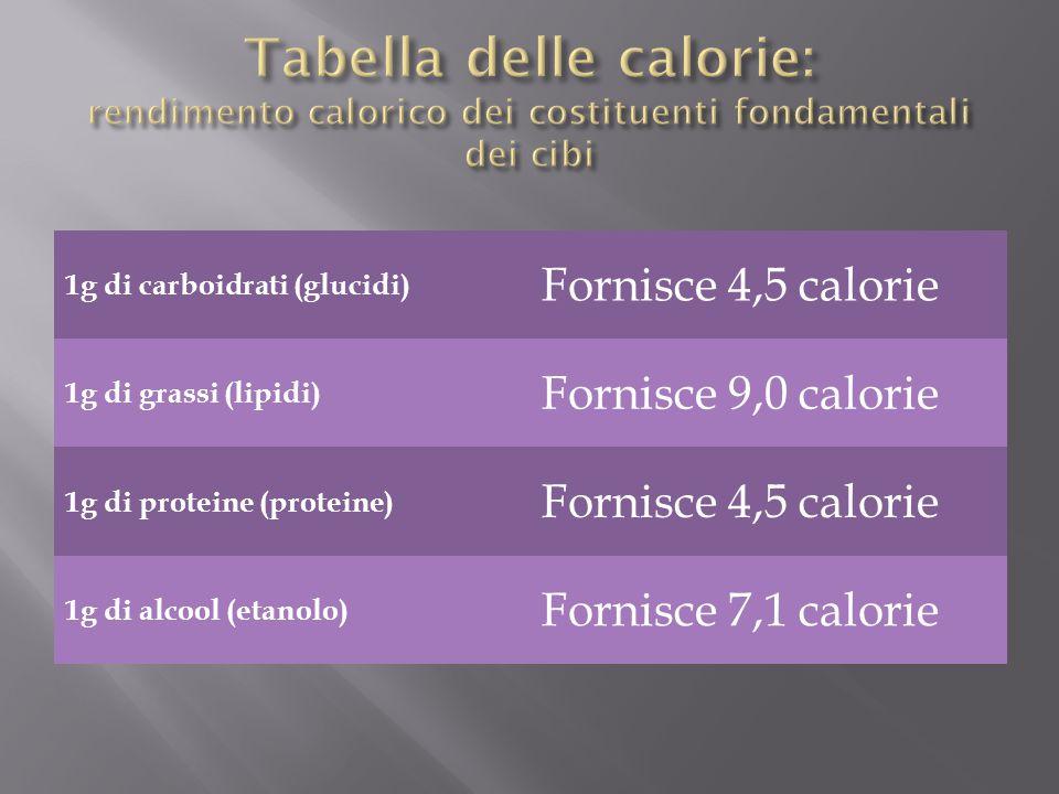 Tabella delle calorie: rendimento calorico dei costituenti fondamentali dei cibi