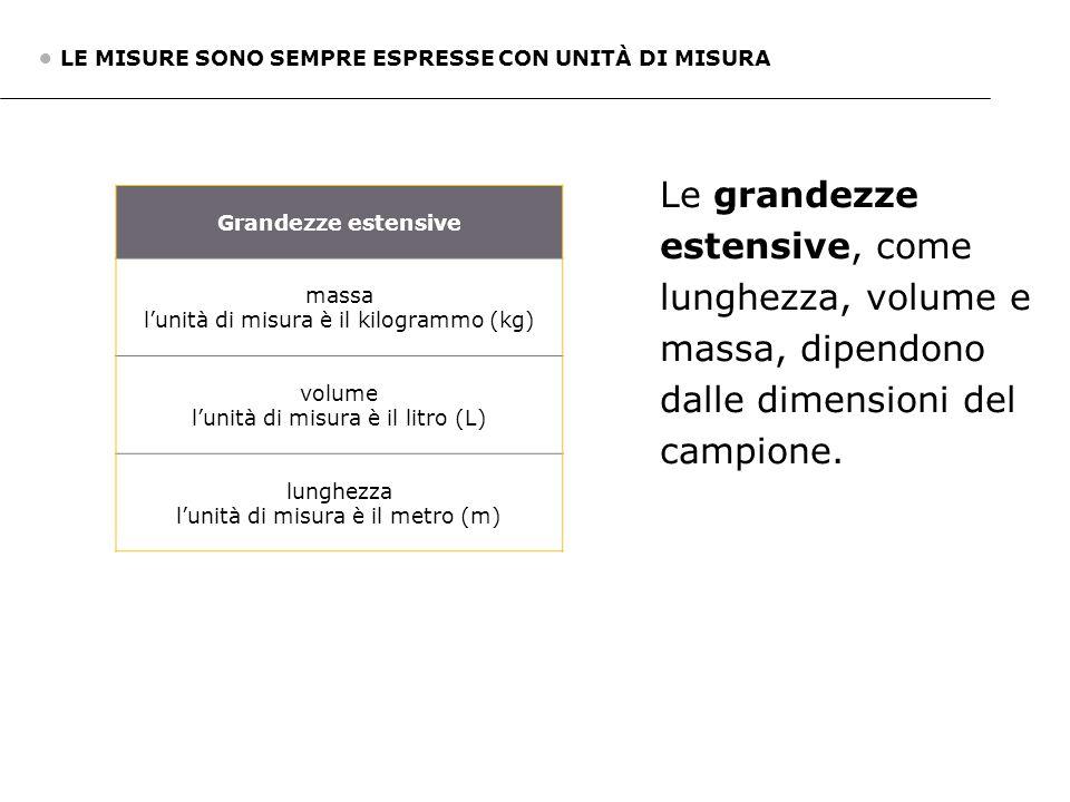 2. Grandezze estensive e grandezze intensive