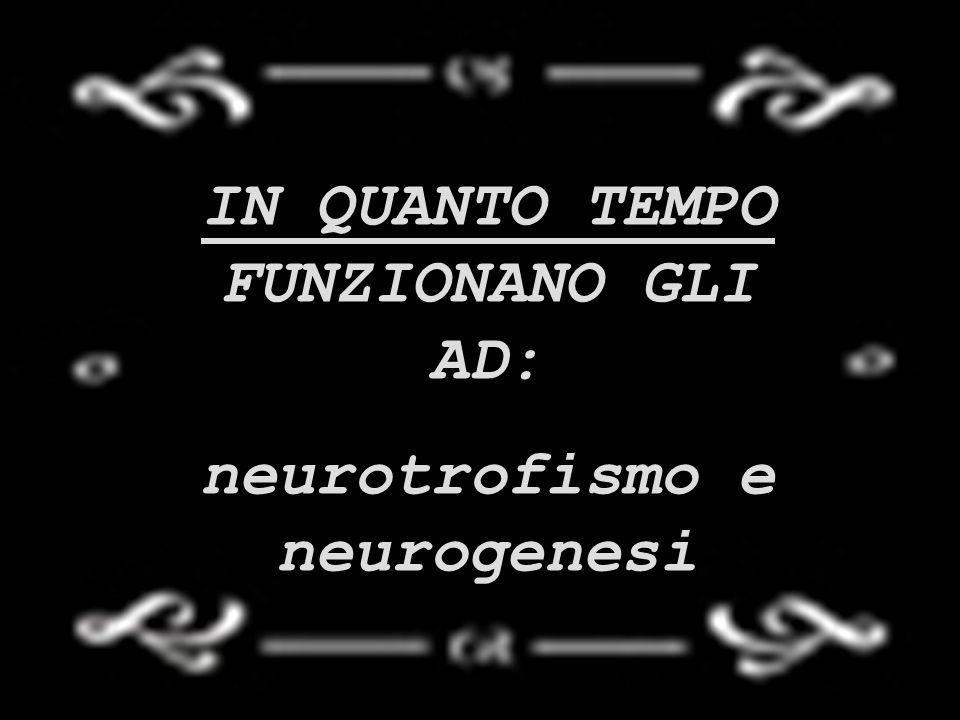 IN QUANTO TEMPO FUNZIONANO GLI AD: neurotrofismo e neurogenesi