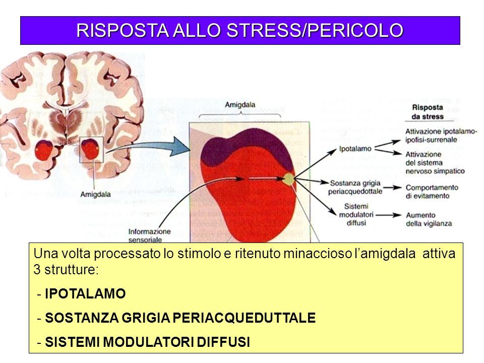 RISPOSTA ALLO STRESS/PERICOLO