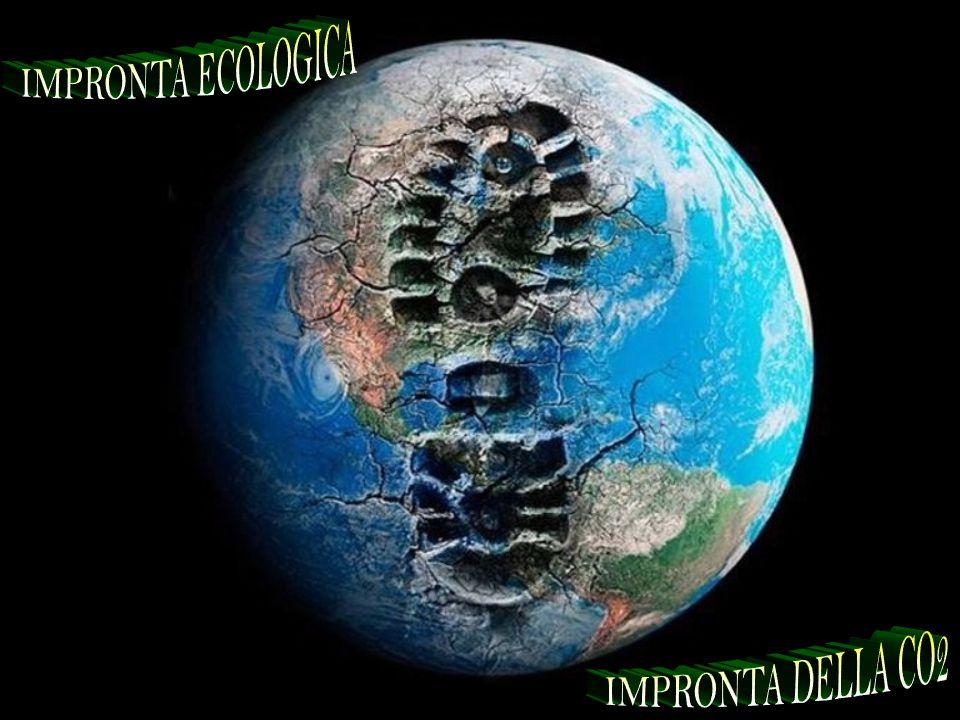 IMPRONTA ECOLOGICA IMPRONTA DELLA CO2