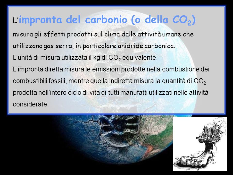 L'impronta del carbonio (o della CO2)