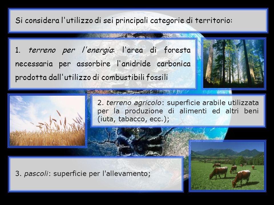 Si considera l utilizzo di sei principali categorie di territorio: