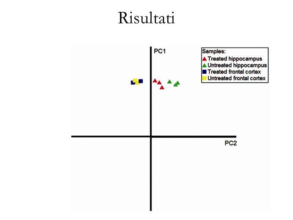 Risultati Si visualizzano tre cluster: il primo relativo ai dati di espressione normalizzata della corteccia frontale, il secondo….