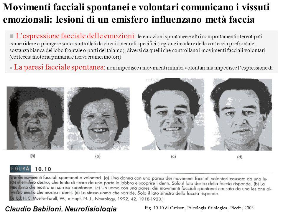 Fig. 10.10 di Carlson, Psicologia fisiologica, Piccin, 2003