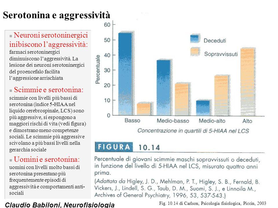 Serotonina e aggressività
