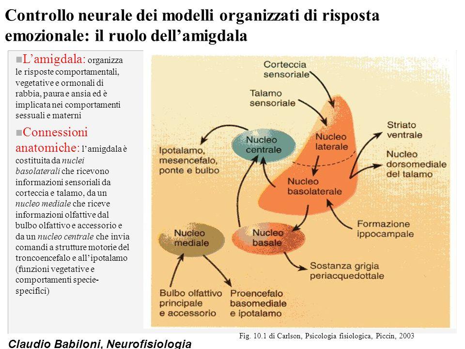 Fig. 10.1 di Carlson, Psicologia fisiologica, Piccin, 2003