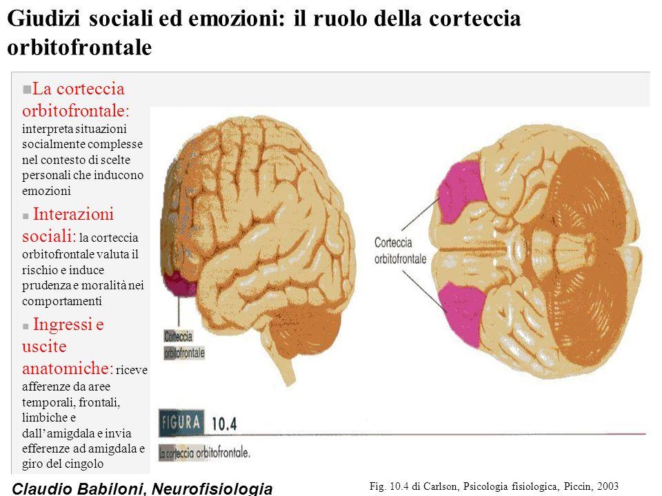 Giudizi sociali ed emozioni: il ruolo della corteccia orbitofrontale