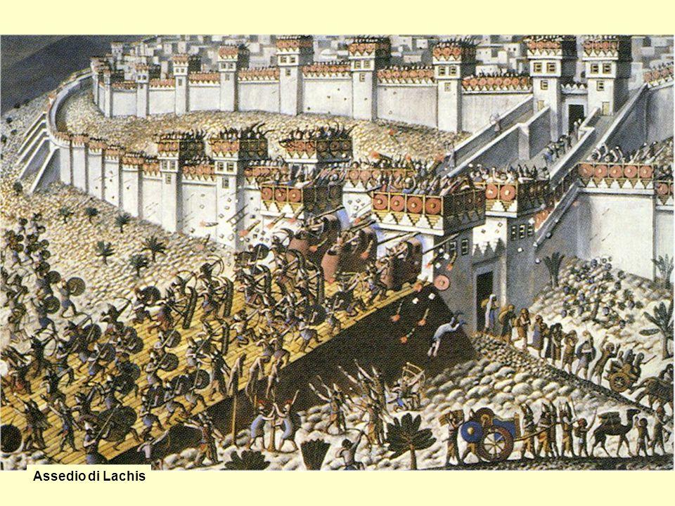 Assedio di Lachis
