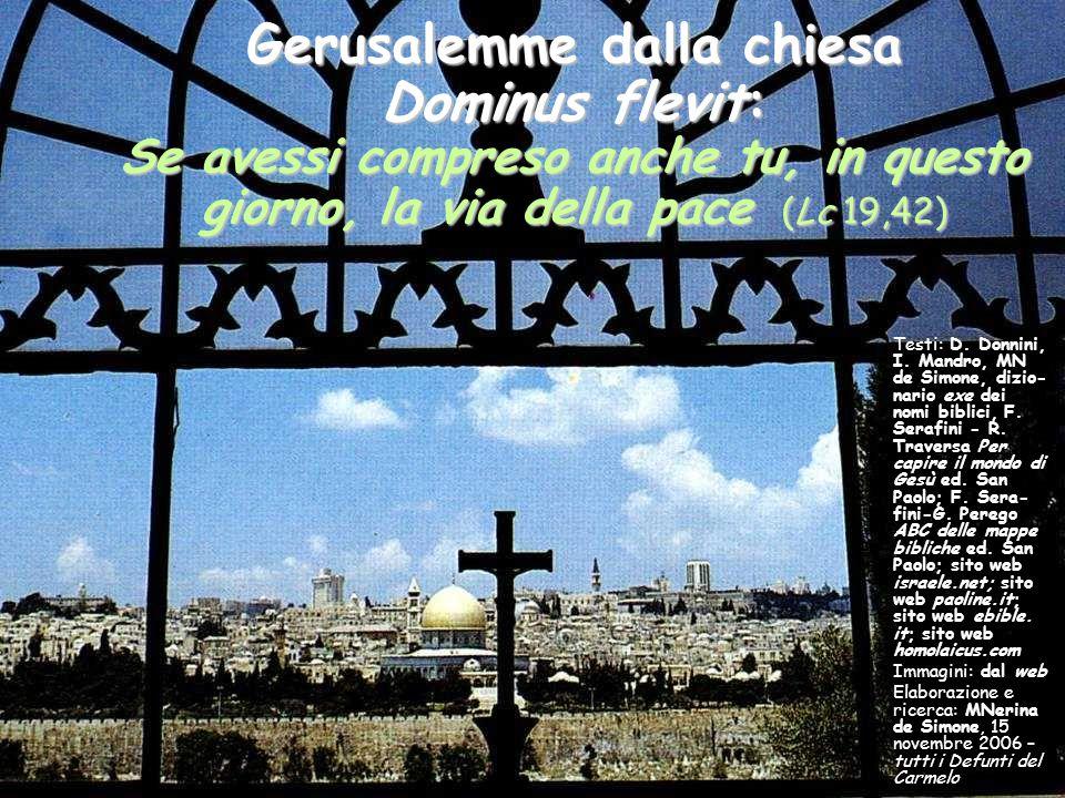 Gerusalemme dalla chiesa Dominus flevit: Se avessi compreso anche tu, in questo giorno, la via della pace (Lc 19,42)