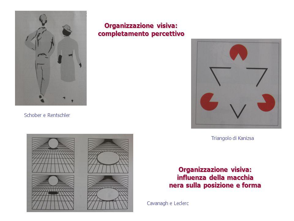 Organizzazione visiva: completamento percettivo