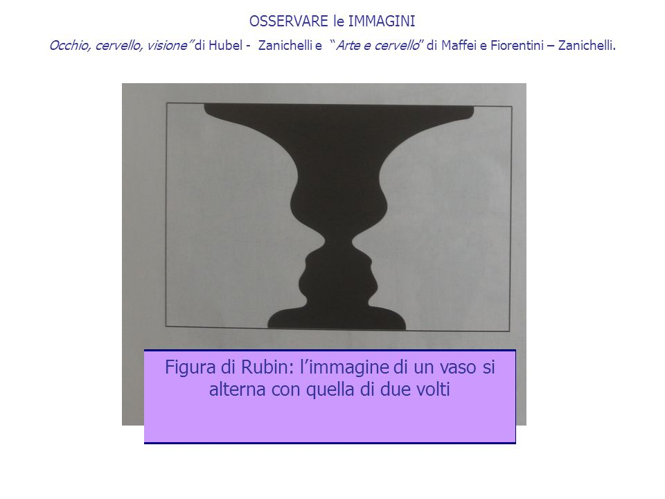 OSSERVARE le IMMAGINI Occhio, cervello, visione di Hubel - Zanichelli e Arte e cervello di Maffei e Fiorentini – Zanichelli.