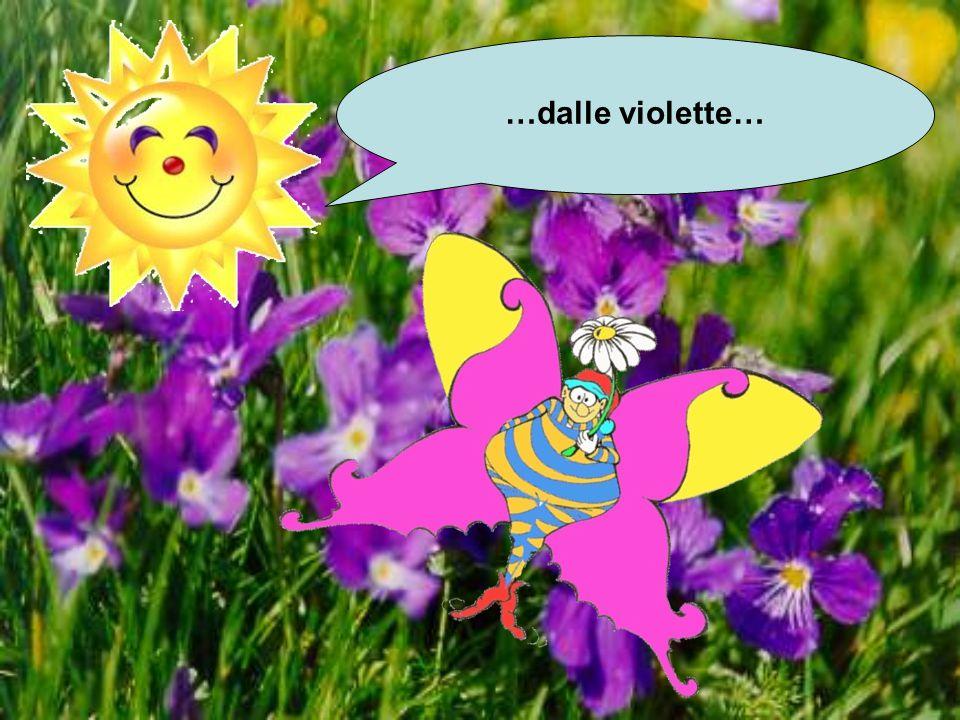 …dalle violette…