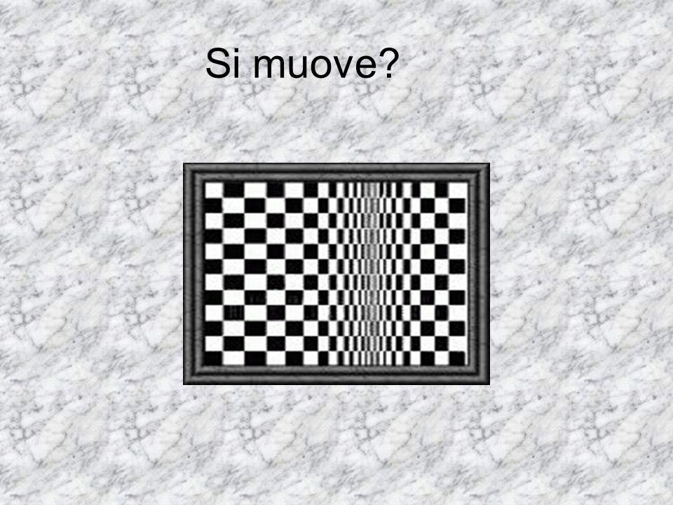 Si muove