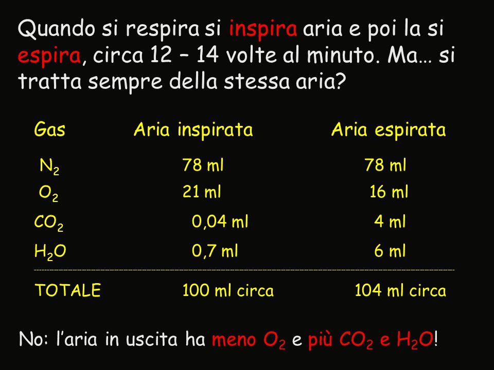 Quando si respira si inspira aria e poi la si espira, circa 12 – 14 volte al minuto. Ma… si tratta sempre della stessa aria