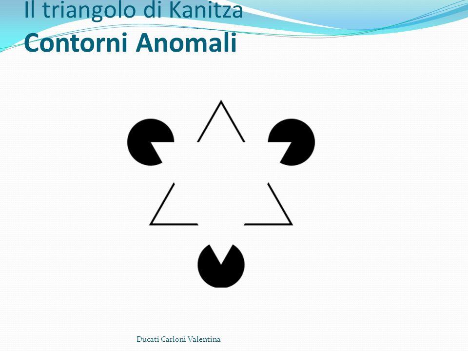 Il triangolo di Kanitza Contorni Anomali