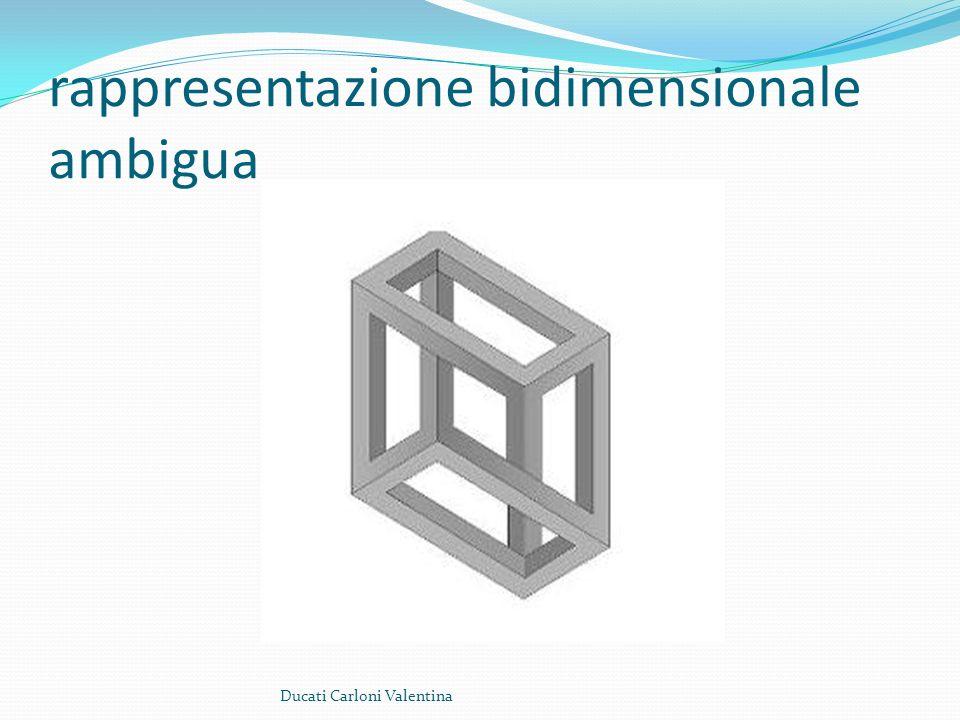 rappresentazione bidimensionale ambigua