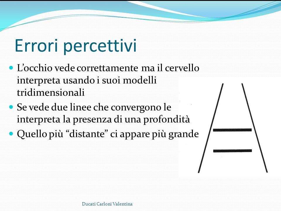 Errori percettivi L'occhio vede correttamente ma il cervello interpreta usando i suoi modelli tridimensionali.