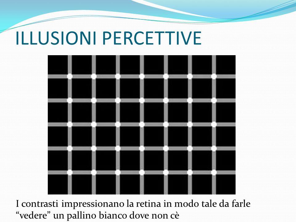 ILLUSIONI PERCETTIVE I contrasti impressionano la retina in modo tale da farle vedere un pallino bianco dove non cè.