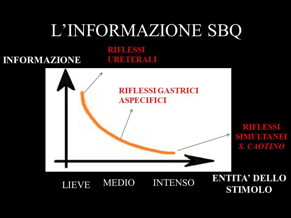 L'INFORMAZIONE SBQ INFORMAZIONE ENTITA' DELLO STIMOLO MEDIO INTENSO