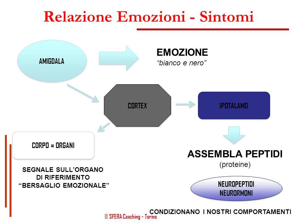 Relazione Emozioni - Sintomi