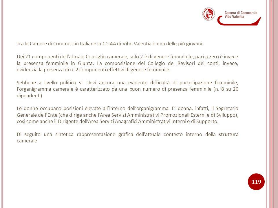 Tra le Camere di Commercio Italiane la CCIAA di Vibo Valentia è una delle più giovani.