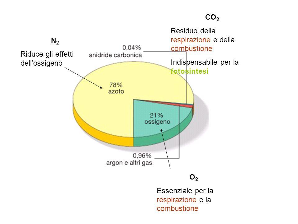 CO2 Residuo della respirazione e della combustione. Indispensabile per la fotosintesi. N2. Riduce gli effetti dell'ossigeno.