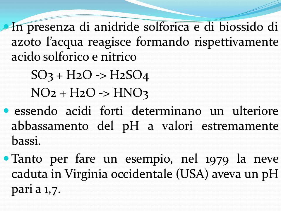 In presenza di anidride solforica e di biossido di azoto l'acqua reagisce formando rispettivamente acido solforico e nitrico