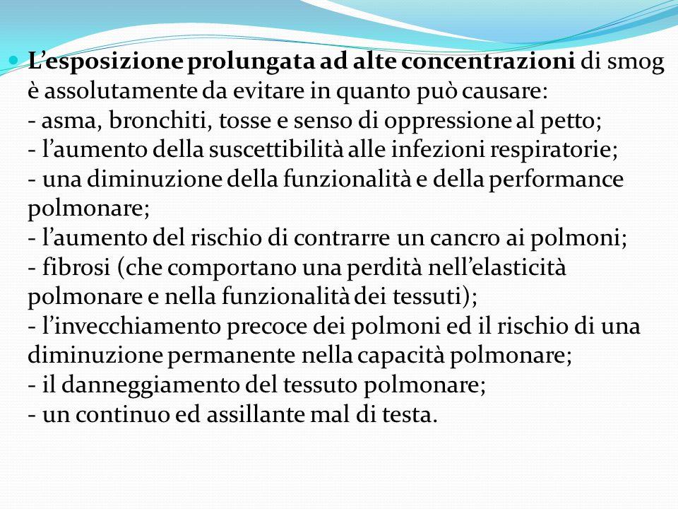 L'esposizione prolungata ad alte concentrazioni di smog è assolutamente da evitare in quanto può causare: - asma, bronchiti, tosse e senso di oppressione al petto; - l'aumento della suscettibilità alle infezioni respiratorie; - una diminuzione della funzionalità e della performance polmonare; - l'aumento del rischio di contrarre un cancro ai polmoni; - fibrosi (che comportano una perdità nell'elasticità polmonare e nella funzionalità dei tessuti); - l'invecchiamento precoce dei polmoni ed il rischio di una diminuzione permanente nella capacità polmonare; - il danneggiamento del tessuto polmonare; - un continuo ed assillante mal di testa.