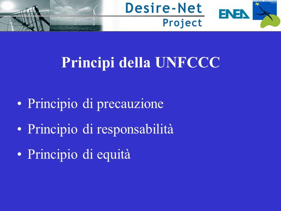 Principi della UNFCCC Principio di precauzione