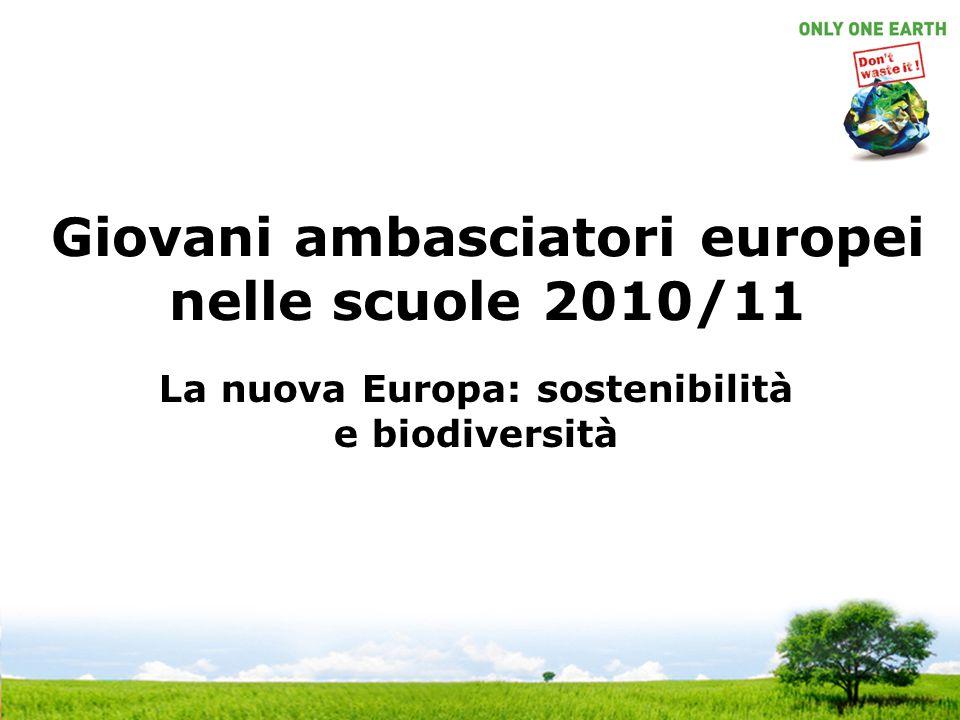 Giovani ambasciatori europei nelle scuole 2010/11