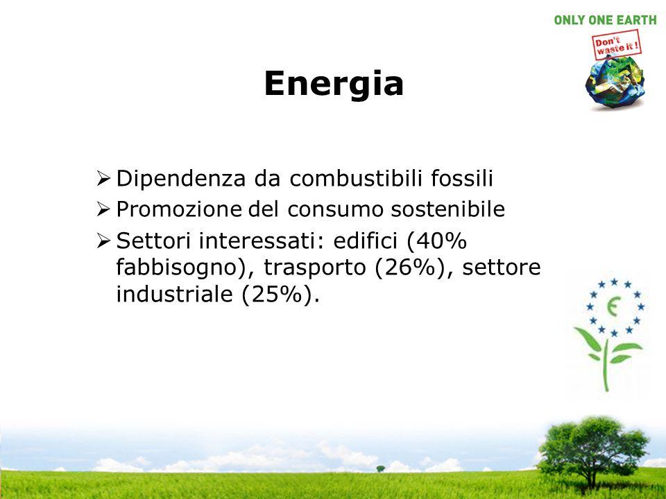 Energia Dipendenza da combustibili fossili